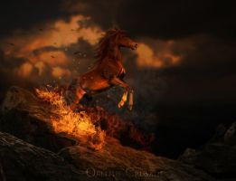 Rise Of The Phoenix by Oblitus-Crusade