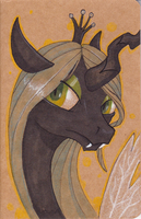 Chrysalis Moleskine Sketchbook by SabreKitty
