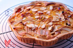 Apple tart by akemiM