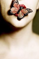 butterfly - by visioluxus by Mayonnaisse