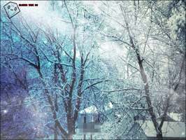 Snowy Trees Redux by laynaxKiSSEd