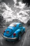 Coccinelle bleue by poilaumenton