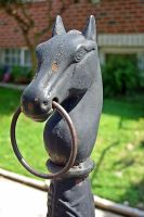 Horse Head for Horses by B9CC1D