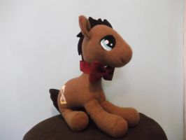 Dr. Whooves aka Time Turner custom plush prototype by imaginaryfriends2012