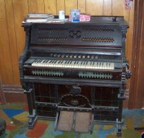 Abandoned Organ by canadianman000
