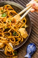 Lo Mein with Tofu 2 by Pancake598