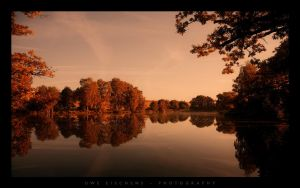 Reflections by Crossie