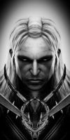 The Witcher 2 by Hotmane