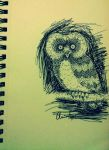 Hoot Hoot by SHTiG