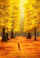 Autumn Walk by RadissonClaire
