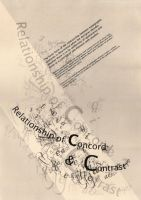 Typography Calligraphy by aquilateo