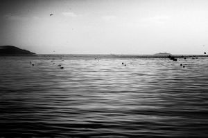 black sea by enyodanis