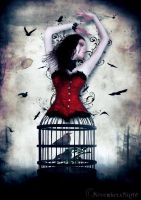 Caged by NovemberxNight