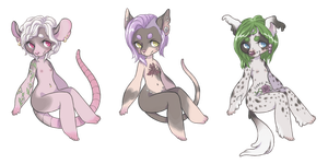 Hairless adoptables auction (OPEN) by t4mibun