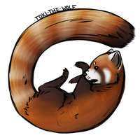 Red Panda by thefireflii