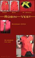 Robin Vest by ICEEWolf