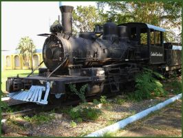 Levittown Steam Locomotive by Sings-With-Spirits