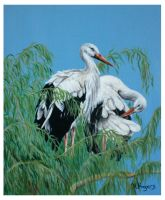 Storks by Helenr251