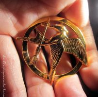 The Hunger Games Pin by starfirepony
