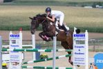 Showjumping Stock Beautiful TB mare series by LuDa-Stock