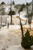 Yellowstone Acid Colors by PaSidor