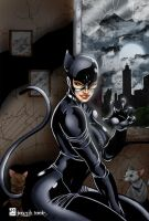 Catwoman by TVC-Designs
