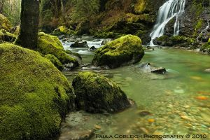 Boulder Creek Falls by La-Vita-a-Bella