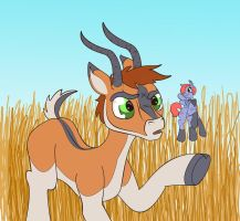 Impala is confused by GT-Ridel