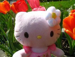 Hello Kitty in tulips by vanessa1775