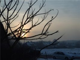 Sunset on a winter's day 6 by MiekeVeke