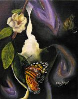 Butterfly by prolet