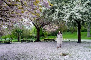 Park Hill Cherry Blossom Viewing Time Day Three by aegiandyad
