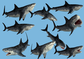 9 Monster Shark Stock PNG's by Roys-Art