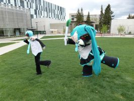 Cosplay: Hachune Miku harasses by Kitara88