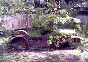 Rustic Car by twofortheprice