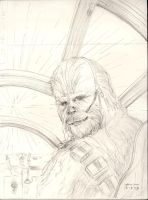 Chewie in Falcon - sketch by antonvandort