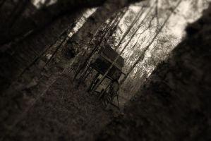 The Treehouse by ddsk1191