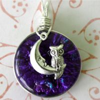 Owl at Night Fused Glass by FusedElegance