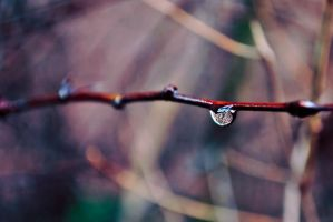 a drop of color by rockmylife
