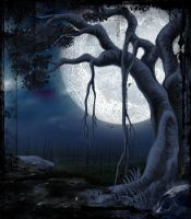 moonlit scary night by indians