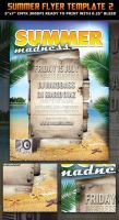 Summer Madness Party Flyer template by Hotpindesigns