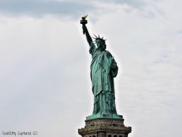 Livin' Liberty by forgivenfate