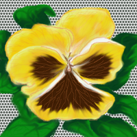 YELLOW PANSY by December012