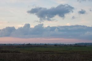 Field Evening Sky by ManicHysteriaStock