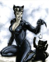 Catwoman is a Playful Cat by RichardCox