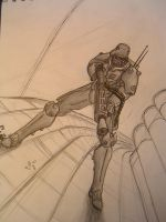 Jin-Roh by cahook2