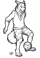Soccer Collie by Kata