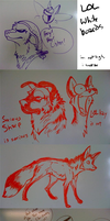 Whiteboard Fun by Kaylink