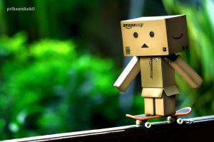 ::Danbo play Skateboard:: by Prihantokoh