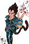 Beware of Vegeta by Villa-Chinchilla